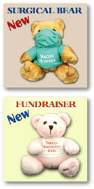 Fundraiser-Bear-Sheet.jpg